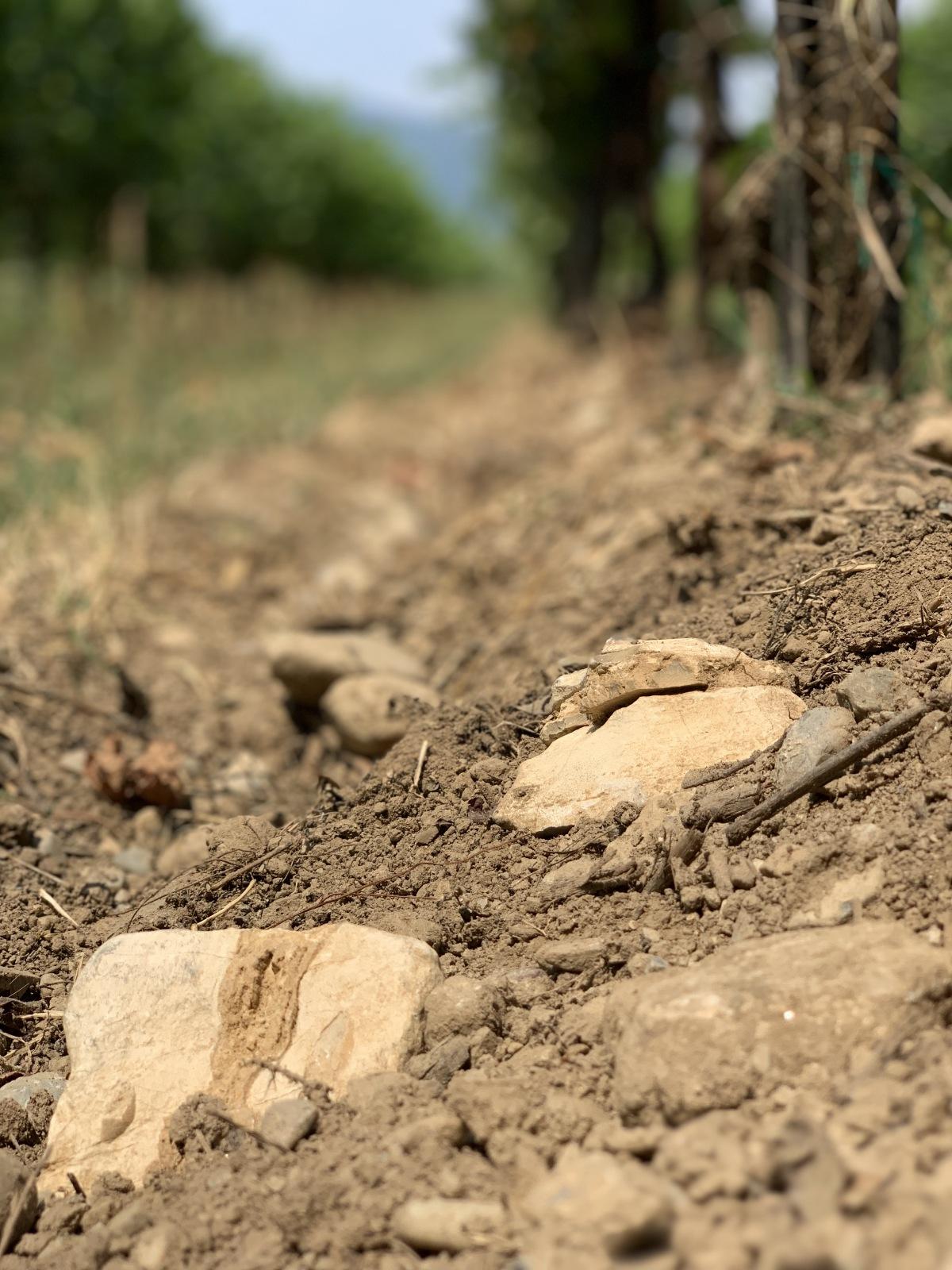 terreno sassi