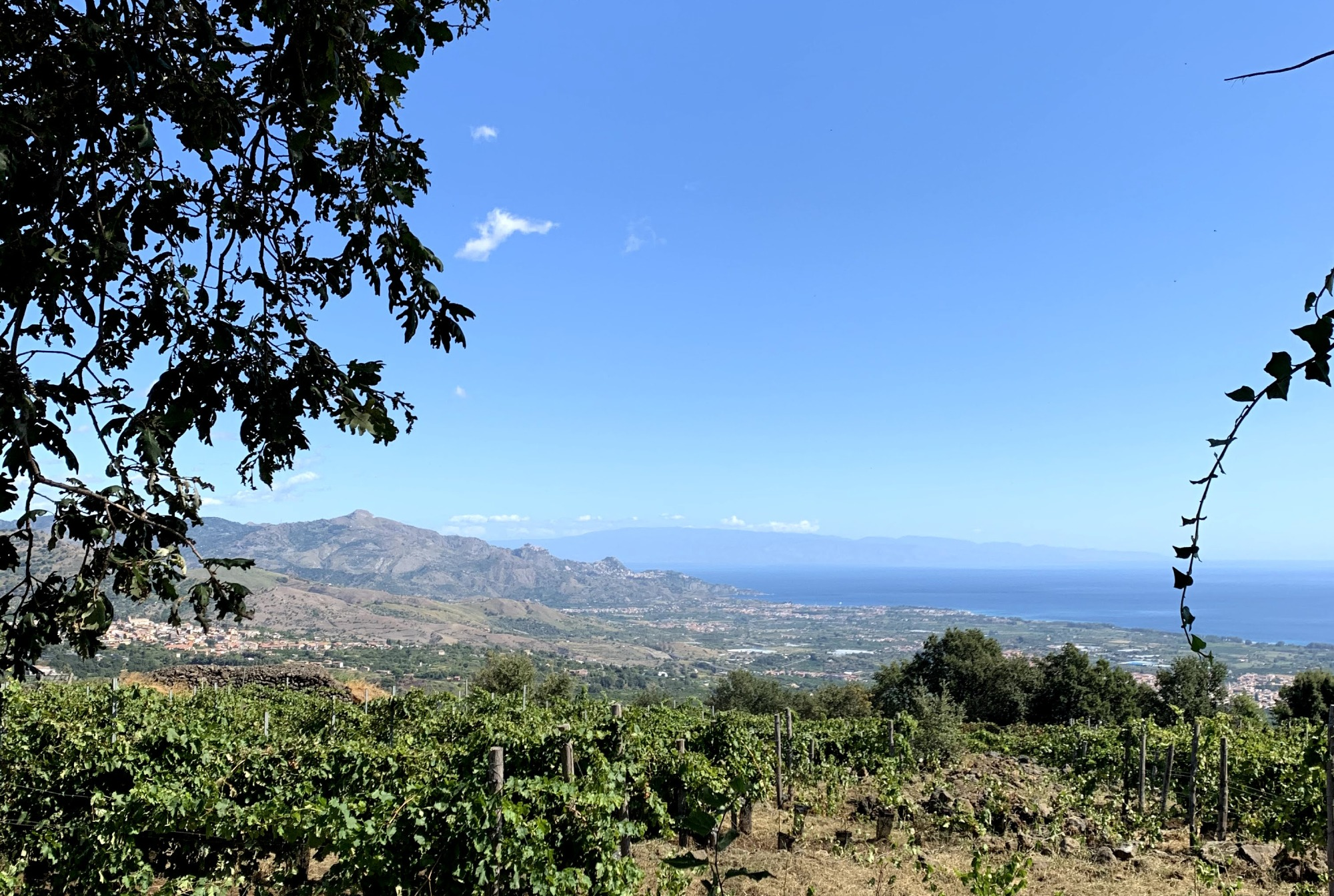 etna-vigneto-mare
